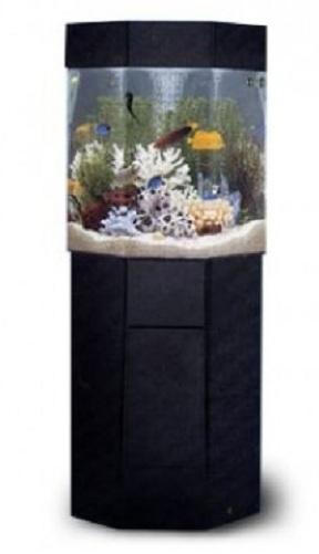 5 gallon aquarium lookup beforebuying for 35 gallon fish tank