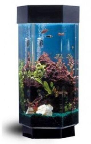 New midwest tropical tt 1500 hexagon aquascape 15 gal for 15 gallon fish tank